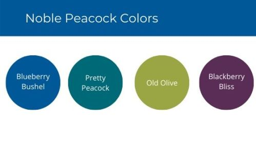 Noble Peacock Colors